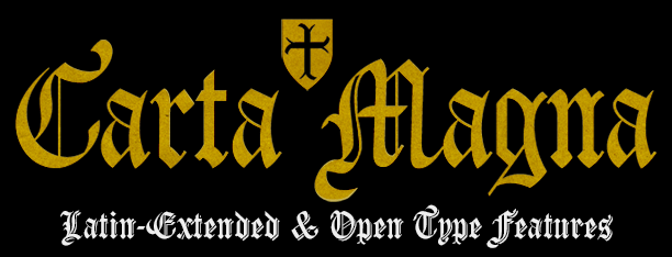 Carta Magna, fuentes góticas